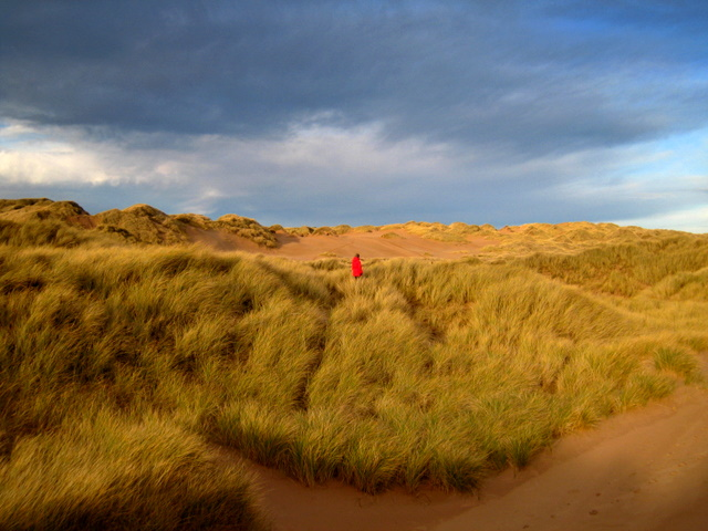 Foveran_Links_dune_system_-_geograph.org.uk_-_624470